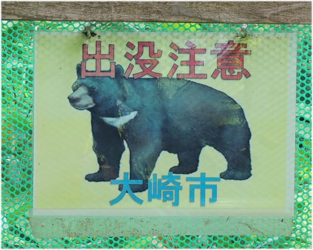 熊が出そう!