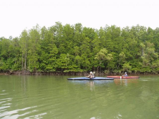 kayak042