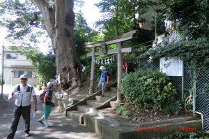滝神社:騎手が祈願に来る